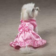 vestidos para cachorros - Pesquisa Google