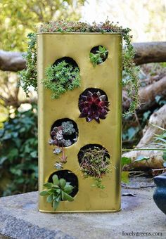 Gardening Project: Recycled Succulent Planter - I wonder if you folded the circle in half instead of cutting a complete circle, bowing it out a little, like a strawberry pot and do herbs or succulents. Suculentas Diy, Cactus Y Suculentas, Succulent Planter Diy, Succulent Landscaping, Cedar Planter Box, Wood Planters, Vertical Planter, Recycled Planters, Planter Ideas