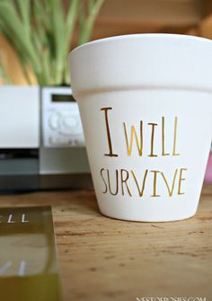 DIY Gold Foil Lettering on Flower Pots (a fun project using your Silhouette machine)