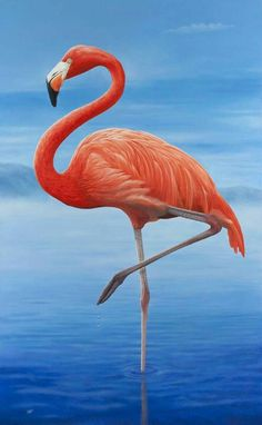 A wall art print from my original oil painting of a pink flamingo. Pink flamingo standing one legged in the classic pose in a tranquil blue lake against a blue sky. Flamingo Painting, Flamingo Art, Pink Flamingos, Flamingo Photo, Flamingo Drawings, Flamingo Pictures, Bird Pictures, Wallpaper Flamingo, Animal Paintings