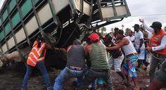 RT, Zulia Prensa, Prensamerica & Conape Internacional ©: Impresionantes fotos de un grupo de personas descuartizando varias reses vivas en Morón Venezuela