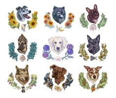 Dog Portrait Series. Each portrait has a icon and floral element that represents the dog's personality. #portrait #dogs #illustration