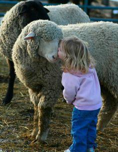 Girl Greeting Sheep