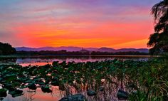 The Kunming Lake of The Summer Palace, Haidian District,Beijing,China from Hobobe.com