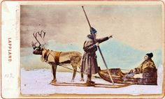 "Vintage postcard from ""Lappland.""  The terms ""Lapp"" and ""Lappland"" are now considered offensive to the Saami people. - The Saami - Reindeer People of the North by Carolyn Emerick"