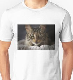 Mike Edge is an independent artist creating amazing designs for great products such as t-shirts, stickers, posters, and phone cases. Tshirt Photography, Animal Photography, Men's Apparel, Cat, Mens Tops, T Shirt, Animals, Shopping, Fashion