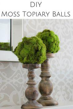 DIY Moss Topiary Bal
