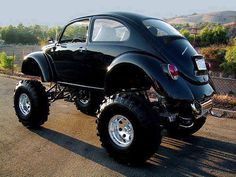 Monster beetle..