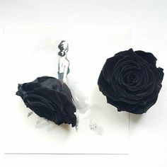 Found so many amazing blooms in the flower market but this black rose made me speechless, hands down. Flower Fashion, Fashion Art, Fashion Design, Floral Illustrations, Illustration Art, Unique Drawings, Ballet Art, Drawing Projects, Cool Sketches