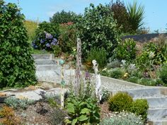 Raised permaculture beds filled with herbs, veggies, fruit and flowers...and a few sculputures.