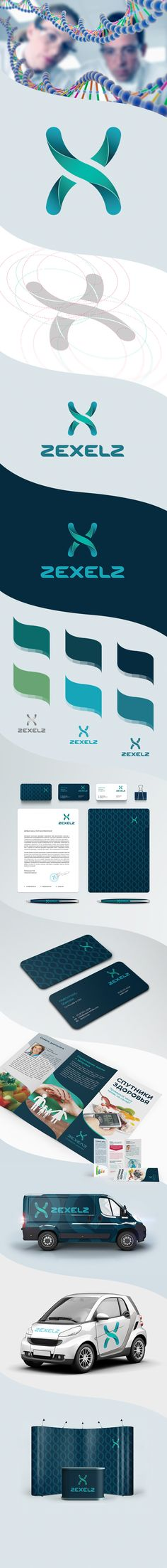 https://www.behance.net/gallery/7199343/Zexelz-corporate-identity #Pharmacy…