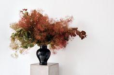 Studio Visit / Meta Flora