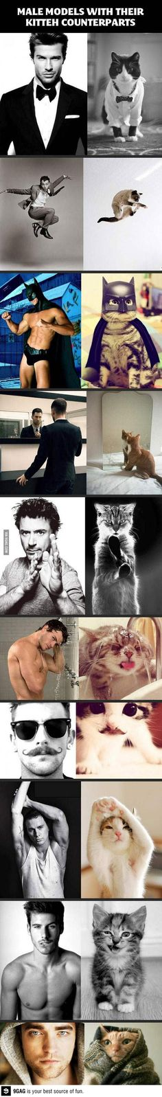 Handsome men and their kitty counterparts. I don't like cats but I love men!