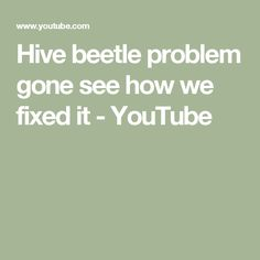 Hive beetle problem gone see how we fixed it - YouTube