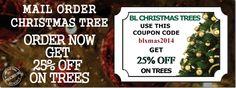 Get the perfect christmas tree for this holiday season at off! Fresh Cut Christmas Trees, Christmas Countdown, Holiday, Vacation, Holidays