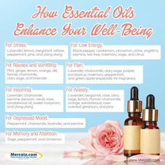 All natural oils helps with your well being Yl Oils, Doterra Oils, Young Living Oils, Young Living Essential Oils, Essential Oil Uses, Essential Oil Diffuser, Nausea Relief, This Is Your Life, Herbal Oil