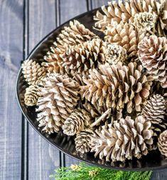 How to make beached pinecones // Toboz fehérítés házilag fehérítővel - karácsonyi dekoráció // Mindy - craft tutorial collection // #crafts #DIY #craftTutorial #tutorial #ChristmasCrafts #Christmas