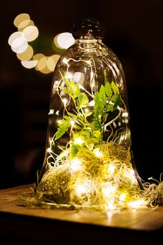 Magical, Festive Fairy Lights For Your Winter Wedding Decor ~ bell jar with fairy lights, spanish moss and greens make a cool centerpiece