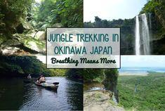 Kayaking through mangroves and exploring waterfalls on a rural island in Okinawa Japan.