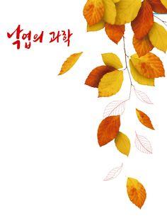 낙엽 - Google 검색