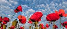 Flowers Photography, Nature Photography, Poppy Flower Photo, Nature Wall Art, Nature Photo, Canvas Prints, Home Decor https://etsy.me/2IwTThq