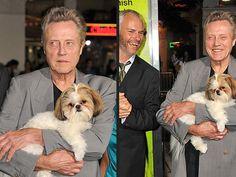 Bonny the Shih Tzu Has a Field Day at Seven Psychopaths Premiere  Dogs, Seven Psychopaths, Christopher Walken, Ozzy Osbourne, Sharon Osbourne
