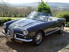 Alfa Romeo Giuila 101 Spider (1964)