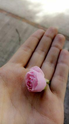 Una florcilla que me encontré por ahí...
