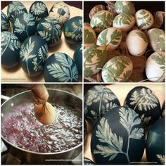 Marblemount Homestead: Last minute Easter Eggs that are stunning and colored naturally - how to dye eggs with red cabbage and a leaf pattern