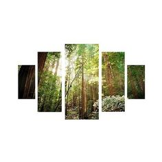 Ariane Moshayedi 'Muir Woods' Multi Panel Canvas Art Set, Green ($160) ❤ liked on Polyvore featuring home, home decor, wall art, green, canvas wall art, canvas panels, modern canvas wall art, green canvas wall art and green home decor