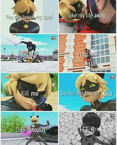 Chat Noir es un amor, amo esto tanto.  Ladybug, loves man!!!