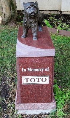 """Toto ( ) """"The Wizard Of Oz"""" Memorial site in Hollywood Forever Cemetary. Toto Trivia: He really was a female Cairn Terrier named Terry and got paid more than the """"munchkins. Cemetery Monuments, Cemetery Headstones, Old Cemeteries, Graveyards, Pet Cemetery, Cemetery Statues, Unusual Headstones, Famous Tombstones, Famous Dogs"""