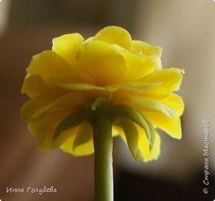 Вторая часть.На этом фото слева мой цветочек,справа- прототип) фото 22