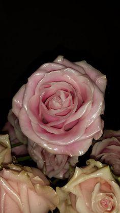 Benodigheden: pan, kleur kaars naar naar keuze, rozen,2 kleine emmers.Je zet de pan op het vuur en legt de kaars er in en laat die helemaal smelten. als de kaars helemaal gesmolten is giet je het over in een van de emmers. LET OP dat je heel even wacht met het over gieten anders kan je emmer smelten! de andere emmer vul je met kout water. wanneer je kaarsvet iets is afgekoeld kan je de rozen er in dompelen. wacht niet te lang want als het gaat stollen moet je het op nieuw smelten anders…