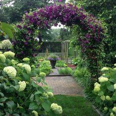 clematis-clad archway and Hydrangea Annabelle in Ina Gartens Garden