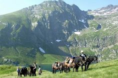 Horse trekking in the mountains of the French Pyrenees - a special experience for the horse riding enthusiast.