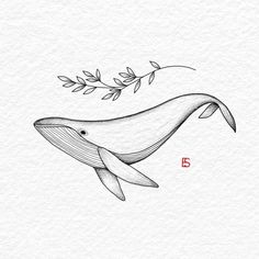draw how to Shiva Tattoo Design, Henna Tattoo Designs, Diy Tattoo, Whale Sketch, Whale Drawing, Blackwork, Sea Creatures Drawing, Whale Illustration, Whale Tattoos