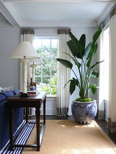 Large plant in patterned planter for corner of family room {Designer David Lawrence's home via Habitually Chic}