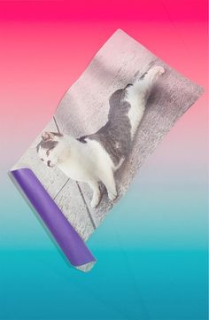 Kitty wants to do yoga too | Yoga Mat by Grey Area
