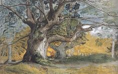 Samuel Palmer...Now tree's seem more interesting,Its surreal Samuel can do that to anything...anything...I've  literally not seen a boring painting by this artistic god as of now .