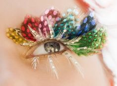 Peacock Inspired Lashes