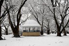 Pioneer Park in Walla Walla in the winter.