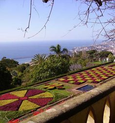 A visit to the Monte Botanical Gardens is a must do on any trip to Madeira and is best reached via the cable cars running up from the Funchal city centre. #Monte #Gardens #Madeira