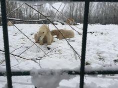 Sneeuwplezier!!