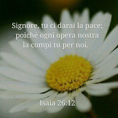 http://bible.com/123/isa.26.12.NR94