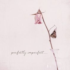 What If? I allow myself to be perfectly, imperfect.
