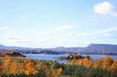 Autumn in the surroundings of Oslo, Norway: Fornebustranda