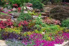 Flower Gardens in the South - Landscape - Atlanta - jenny_hardgrave