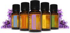 https://essentialsolutionsblog.wordpress.com/2016/05/23/top-10-essential-oils-for-beginners/