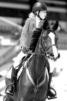 equestrian show jumping // BW jumper